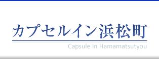 カプセルイン浜松町
